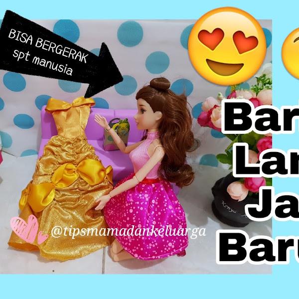 D.I.Y. Barbie Dolls CantiK Tangan dan Kaki Bisa Digerakan aka Pivotal Seperti Barbie Made To Move MTM