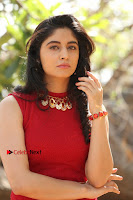 Telugu Actress Zahida Sam Latest Pos in Red Gown at RF Films New Movie Opening  0195.JPG