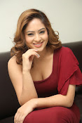 nikisha patel new sizzling photos gallery-thumbnail-6