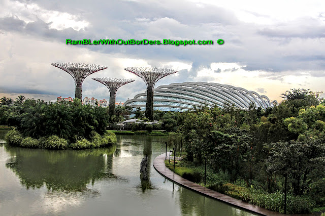 Conservatories and Supertrees, Gardens by the Bay, Singapore