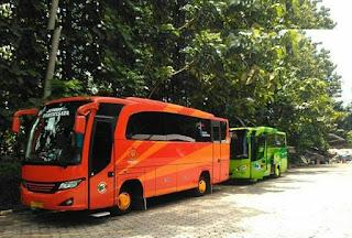 Sewa Bus Wisata Jogja Seat 30