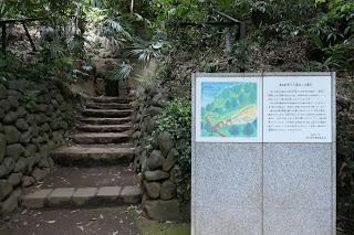 等々力渓谷内には、当時有力だった農民が埋葬された横穴跡があります。