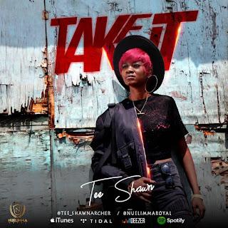 TeeShawn - TAKE IT ( Audio MP3)