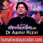 http://www.humaliwalayazadar.com/2013/01/dr-amir-rizvi-nohay-2007-to-2010.html