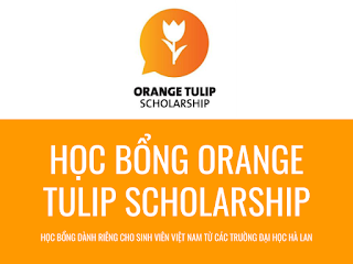 Orange Tulip Scholarship Hà Lan 2019 – 2020