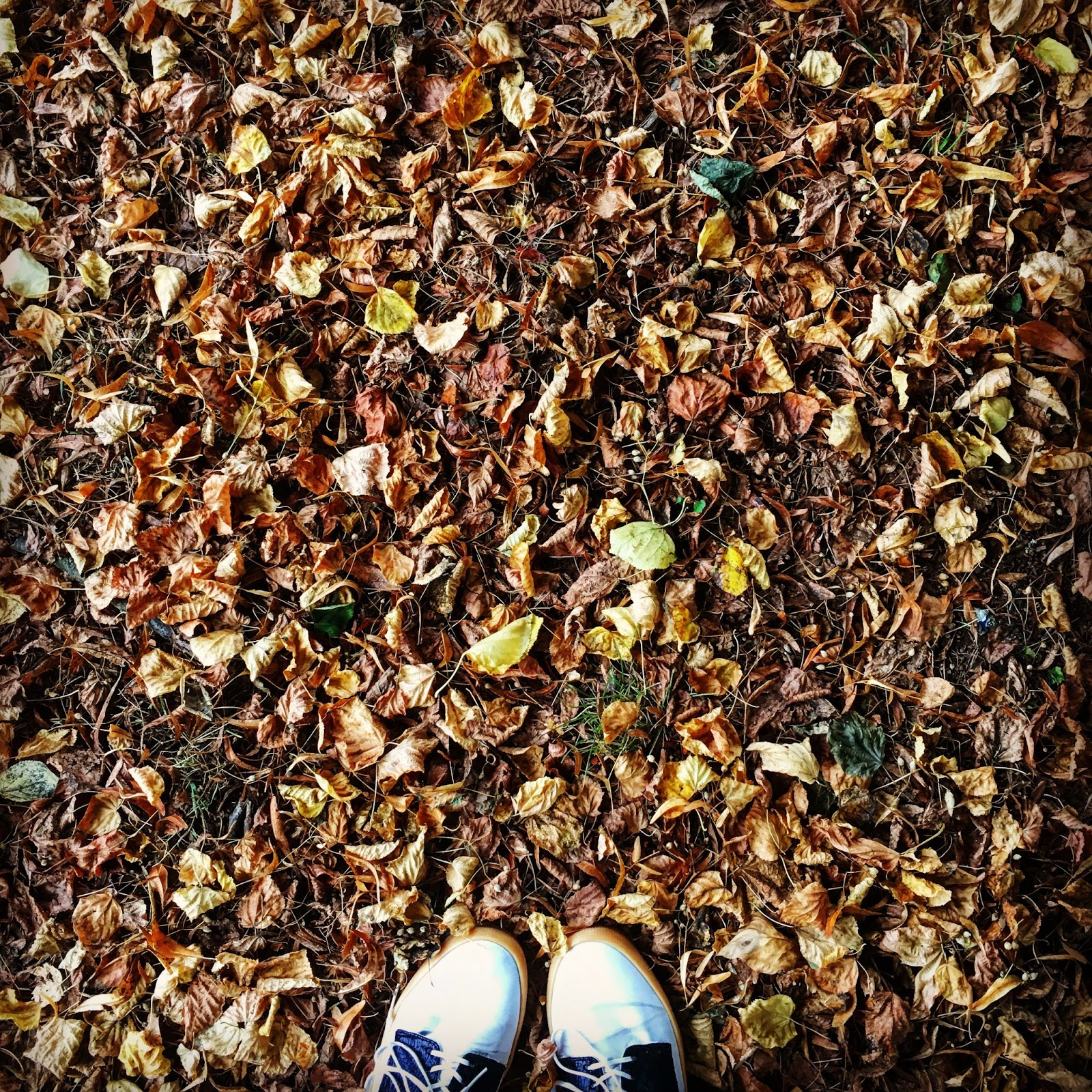 13 Reasons To Be Pretty Darn Excited About Autumn