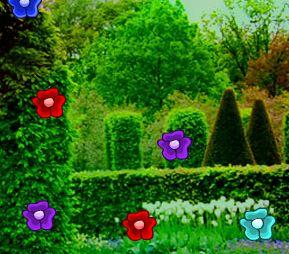 Zooo Botanical Garden Escape