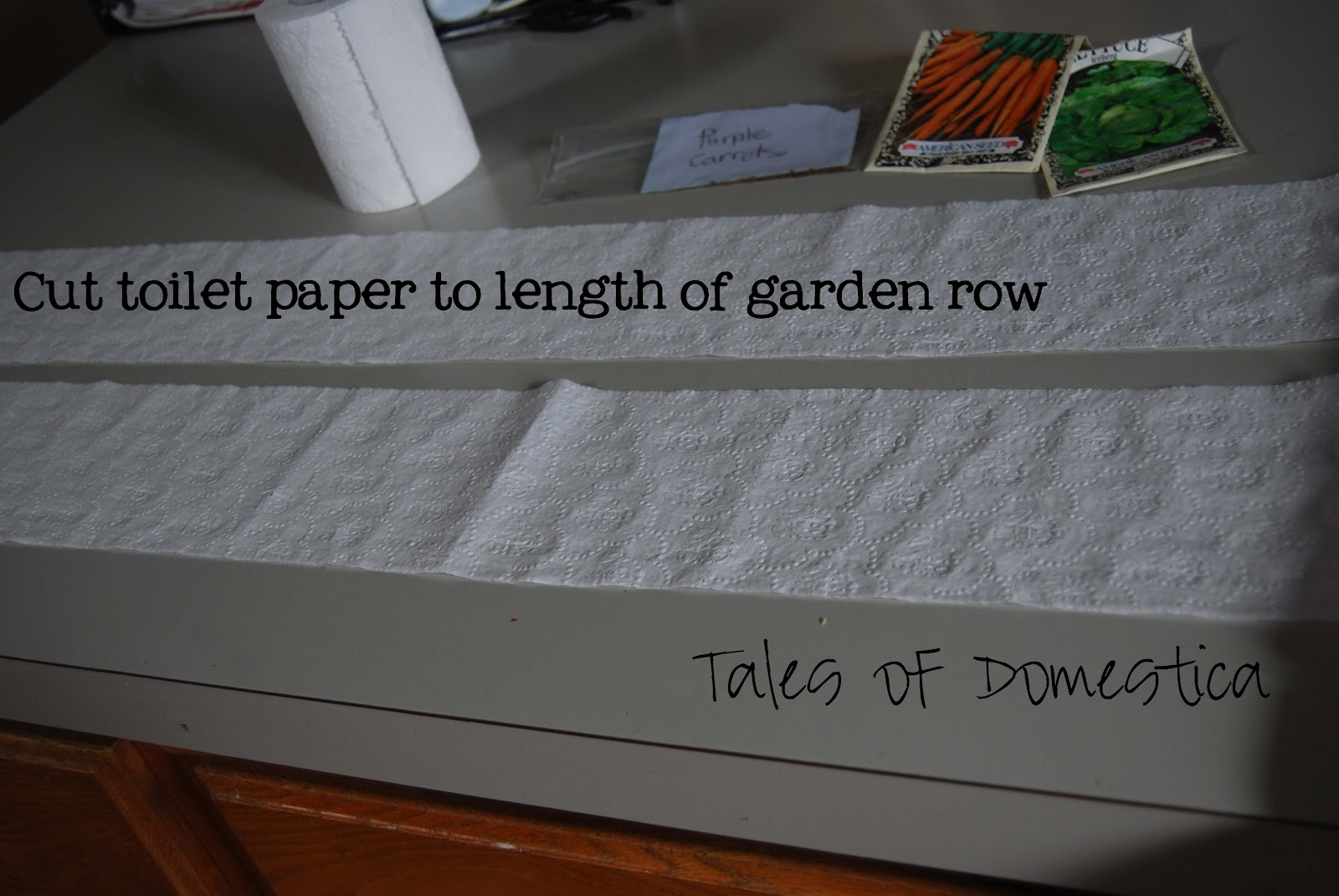 Great Garden Experiment: DIY Seed Tapes - Tales Of Domestica