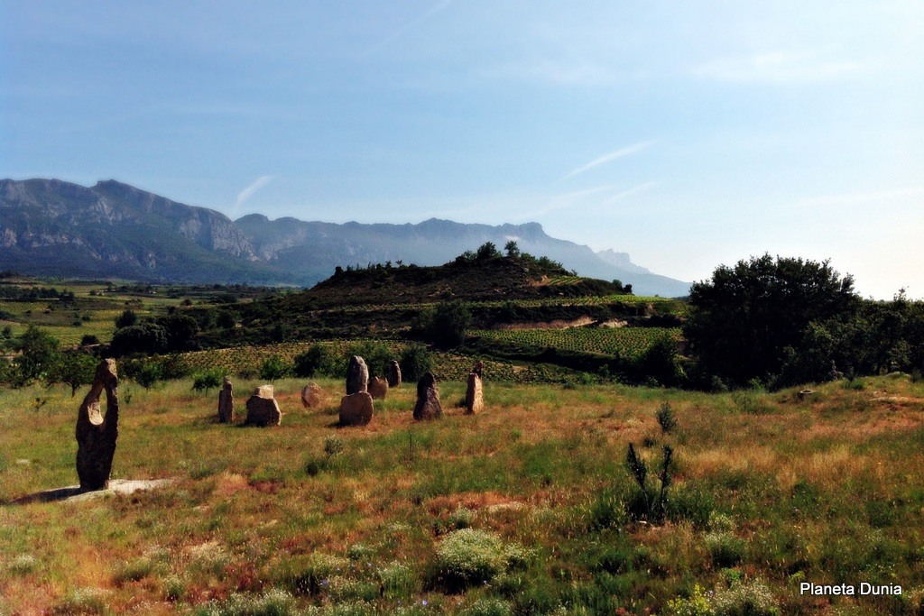 Planeta dunia zintzo la sinceridad hecha vino for Villabuena de alava