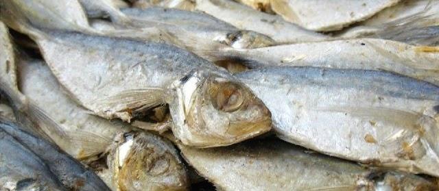 Gambar Ikan Asin Gabus&Peda Belah dan Biasa dari Jenis Ikan Kecil serta Besar