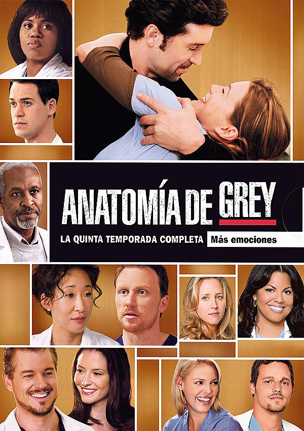 Ver serie greys anatomy ultima temporada / Happy endings season 1 ...