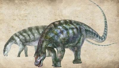 Fosil Dinosaurus Naga Pengubah Sejarah Sauropoda Ditemukan