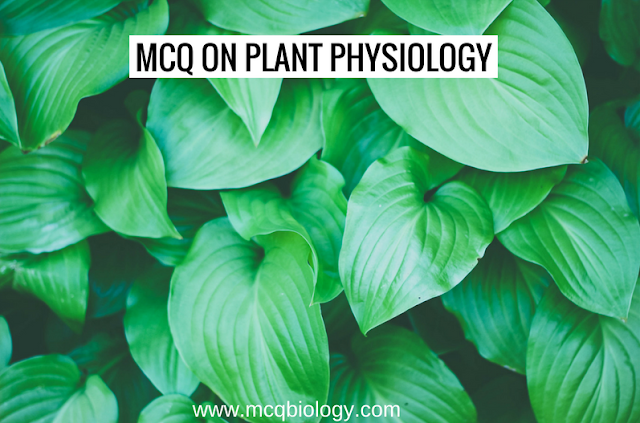 Multiple Choice Questions on Plant Physiology