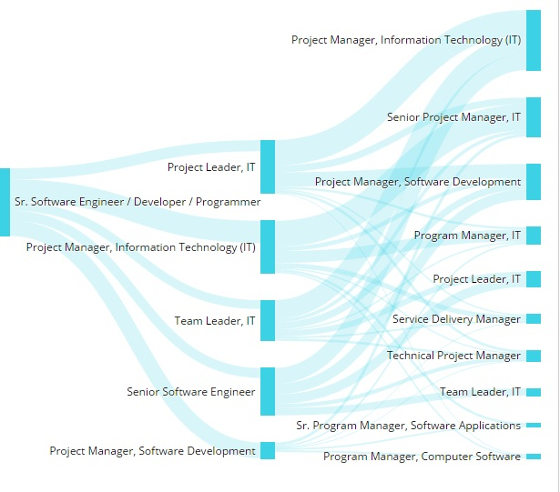 Career path for Software.