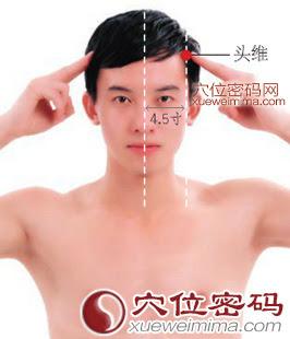 頭維穴位 | 頭維穴痛位置 - 穴道按摩經絡圖解 | Source:xueweitu.iiyun.com