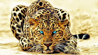 Animal-Fractals-Leopard-Design-Wallpaper-Aqua-Eyes-1920x1080.jpg