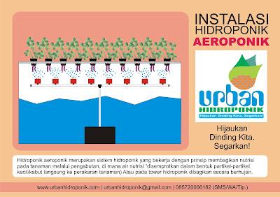 urban hidroponik, jasa hidroponik, pelatihan hidroponik