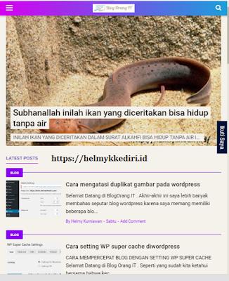 Blog Yang Telah dibuat
