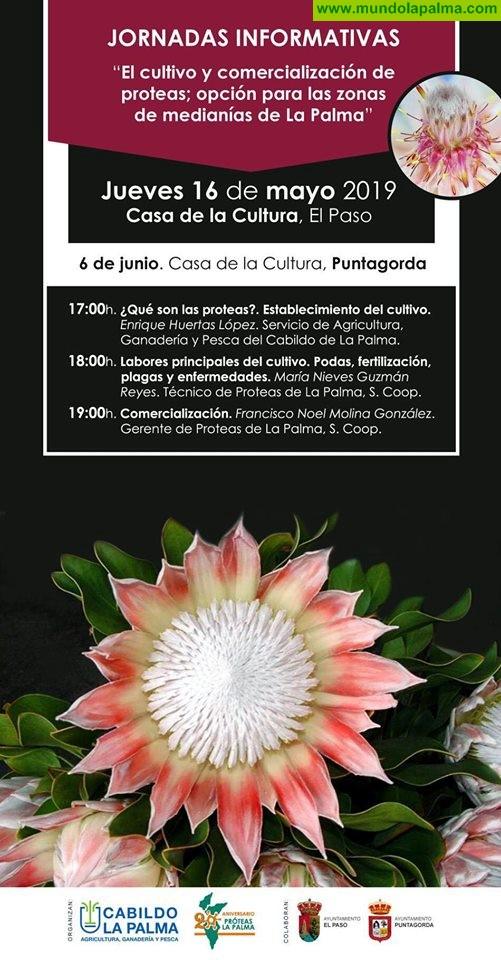"""Jornadas Informativas """"El Cultivo y Comercialización de las Proteas; opción para zonas de medianías de La Palma"""""""