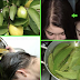 Guava Leaves: How To Grow Your Hair Extremely Fast And Stop Hair Loss In A Week