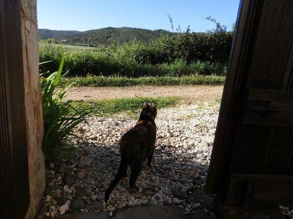 monte da vilarinha carrapateira portugal