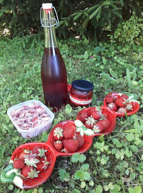 mansikkamehu mansikkahillo säilöminen pakastus