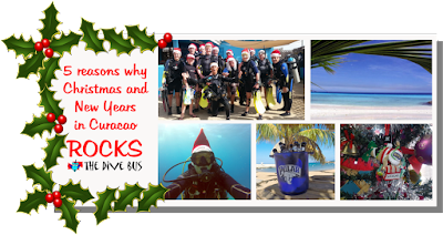 http://thedivebus.blogspot.com/2016/09/possibly-your-best-christmas-dive.html