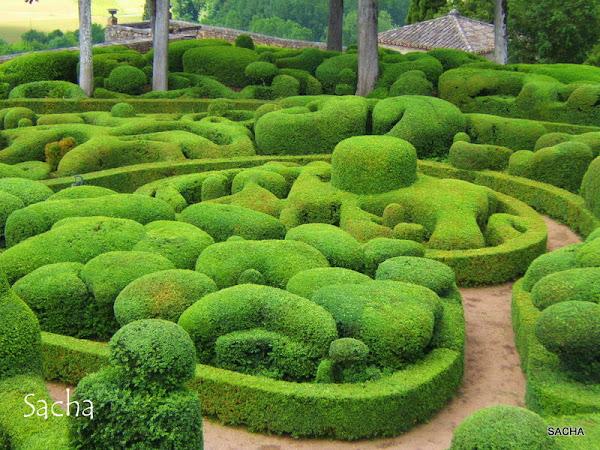 Un jour une photo l 39 art topiaire jardins suspendus - Jardin topiaire ...