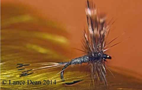 Adams Dry Fly