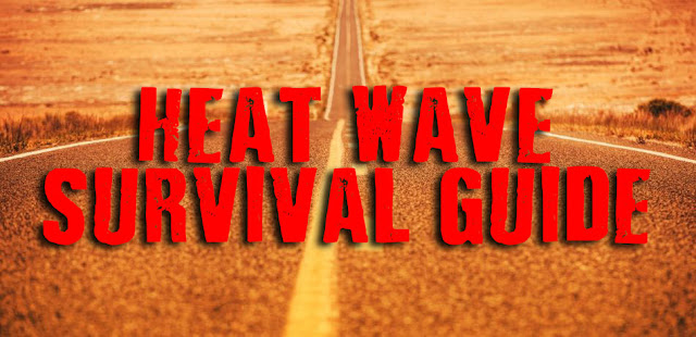 Heat Wave Survival Guide: 5 Tips to Stay Safe When the Temperatures Rise