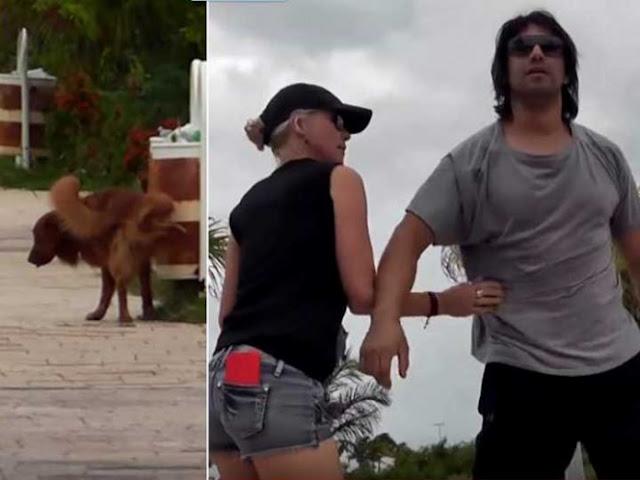 Por grabar a su perro… enfurece y reta a reportero a 'un tiro' (video)