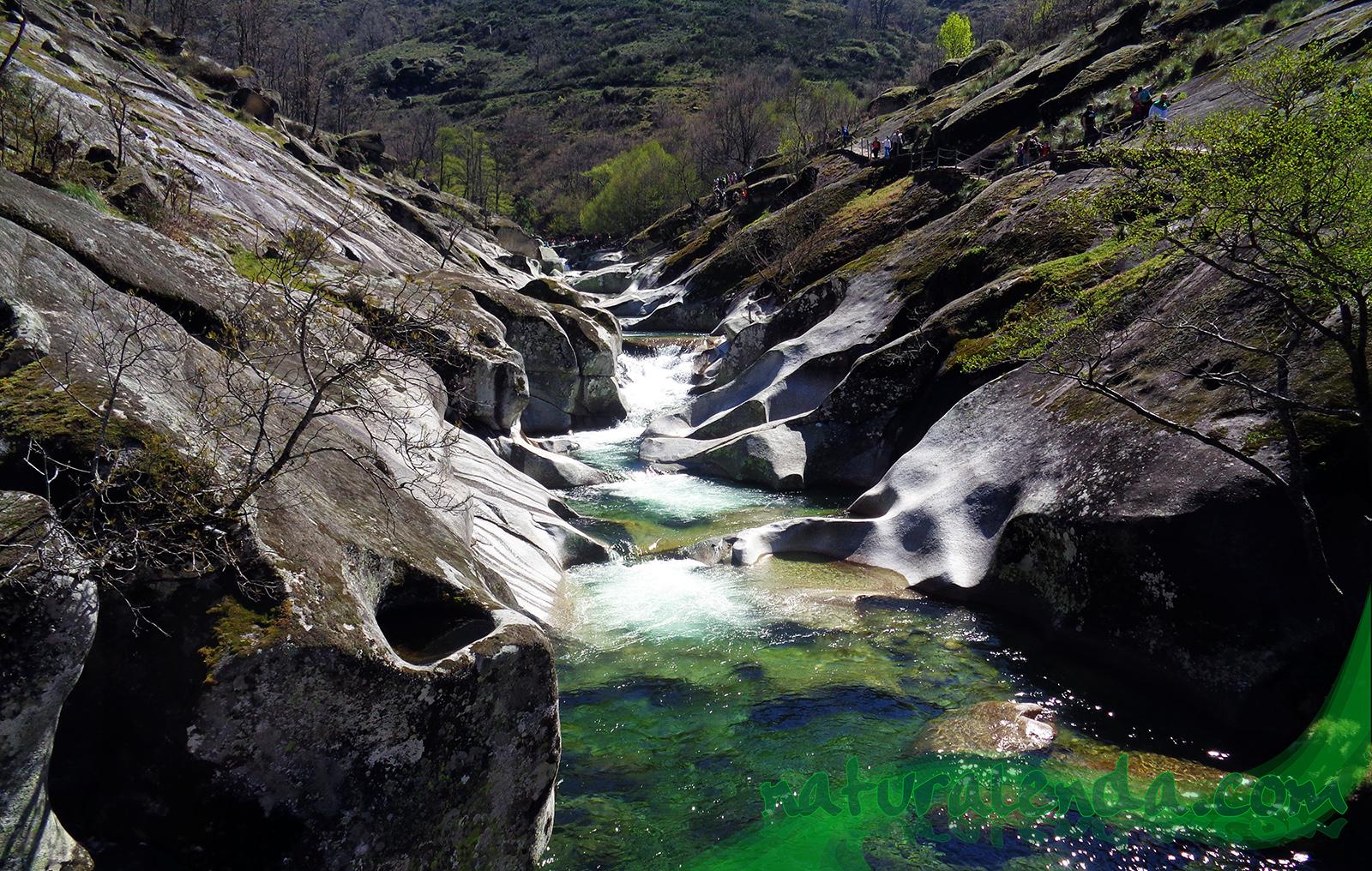 arroyo entre piedras