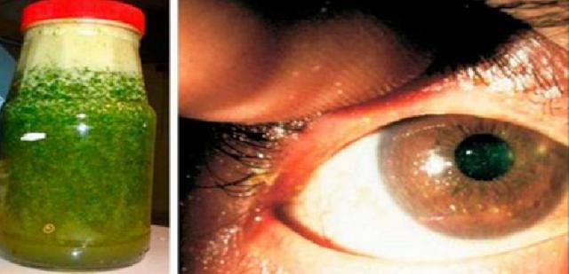 LUAR BIASA !! Konsumsi Jus Ini,Bantu Atasi Mata Minus Dalam 10 Hari, Bahkan Untuk Orang yang Sudah Lanjut Usia !!