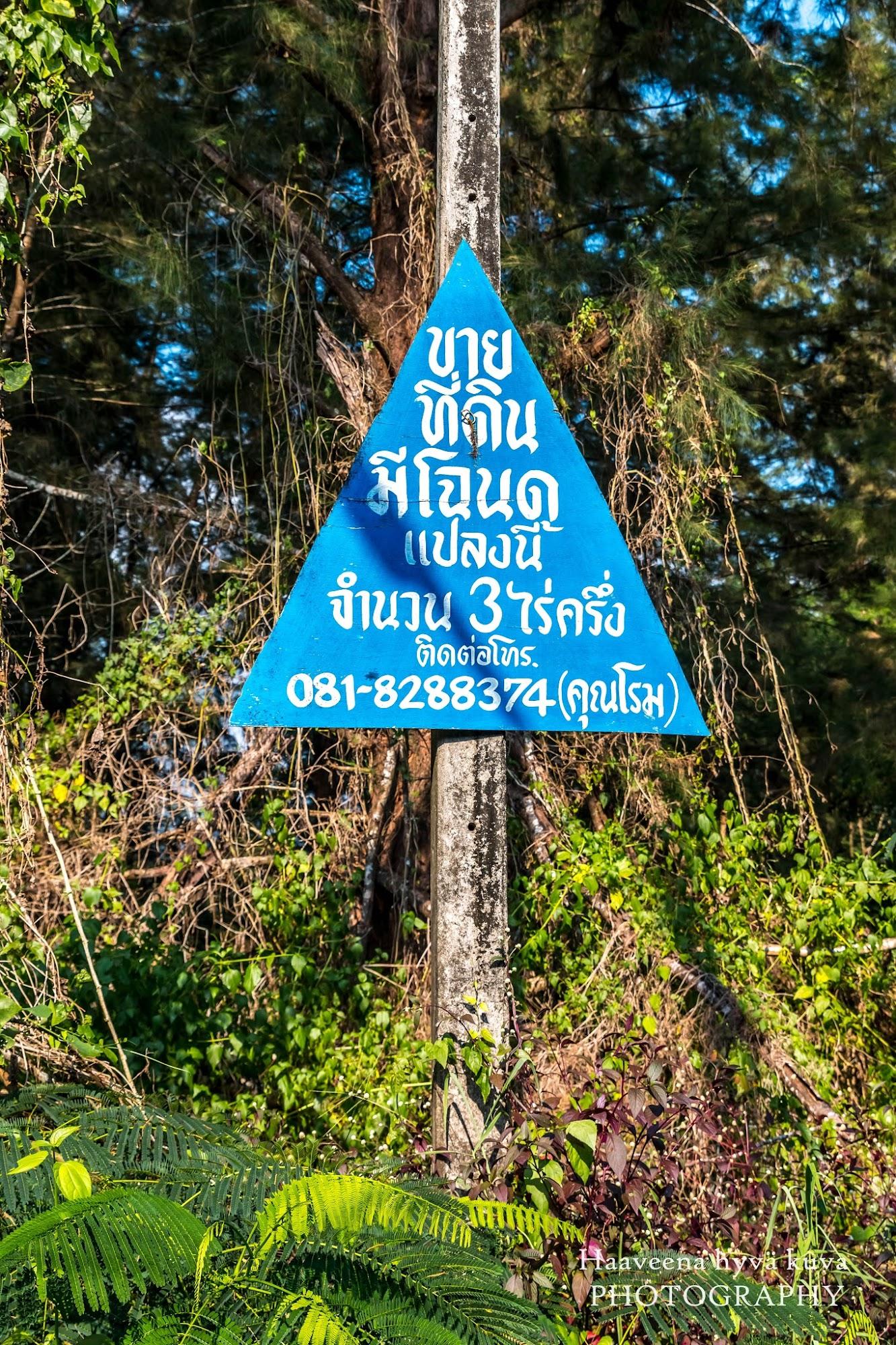 thaimassa