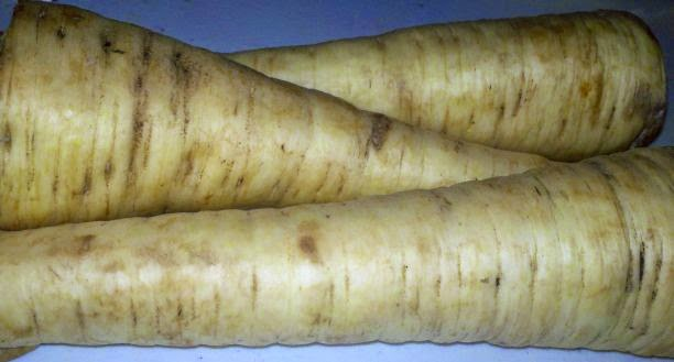 What are parsnips, how to cook parsnips, how to use parsnips, dehydrating parsnips
