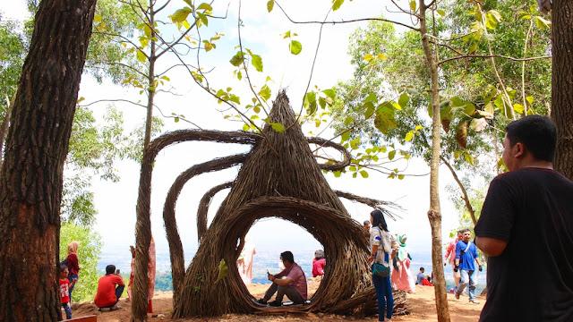 spot foto hits hutan pinus bantul