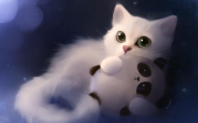 Kucing Parsi Yang Comel Kucing Parsi Yang Comel
