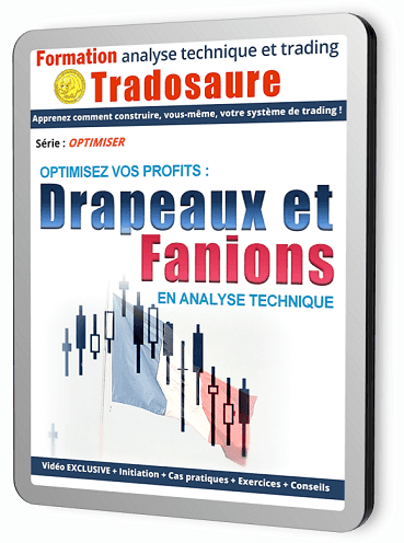 DRAPEAUX-FANIONS-BOURSE-TRADING-formation-tradosaure