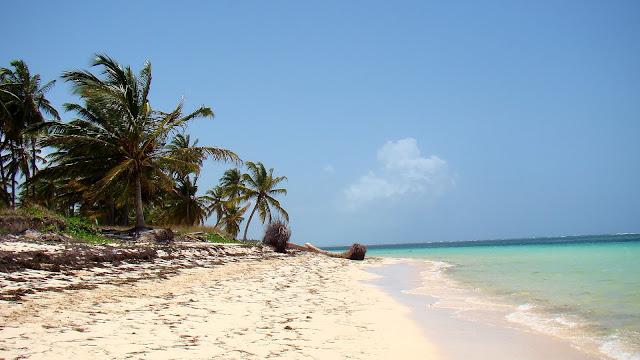 dzika plaża