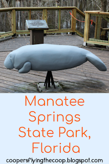 Manatee statue on top of the title on a light blue background.