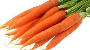 wortel, carrots