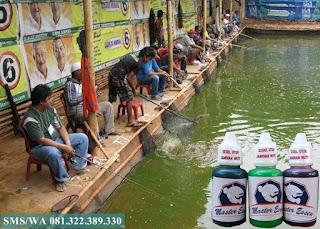 Essen Untuk Umpan Ikan Lele Galatama