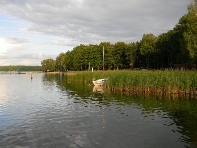 jezioro, łódź, las, woda