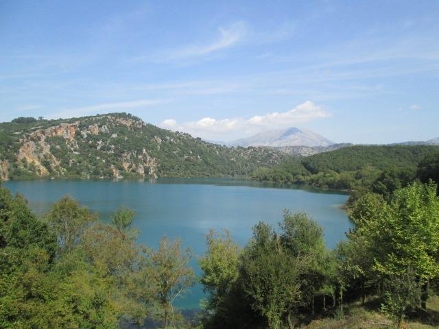 Πρέβεζα: Δάσος Πλατυφύλλων Χαρακτηρίστηκε Η Λίμνη Ζηρού