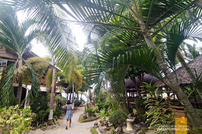Sellona Beach Brod Louie Beach Resort