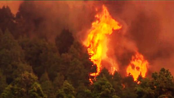 Un agente forestal ha muerto en el incendio de La Palma, agosto 2016