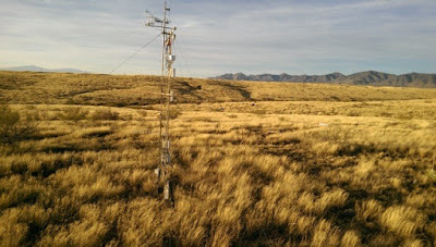 In grasslands, longer spring growing season offsets higher summer temperatures