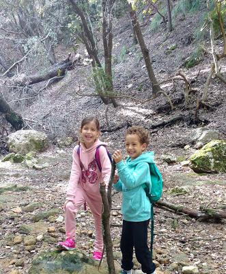 excursión con niños Mallorca