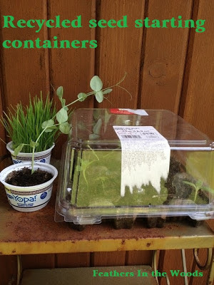 seed starting containers