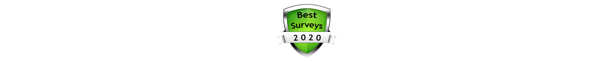 Make money online from surveys